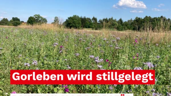 Gorleben wird stillgelegt, SPD Gregor